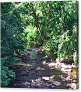 River In August Canvas Print