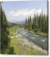 River In Denali National Park Canvas Print