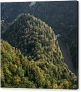 River In Forest Mountains Canvas Print