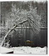 River In The Winter Canvas Print