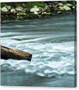 River Motion Canvas Print