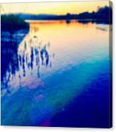 River Musing Canvas Print