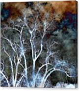 River Oak Dream Canvas Print