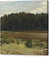 River On The Edge Of A Wood Canvas Print