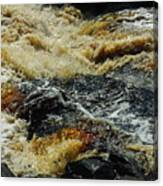 River On The Rocks Canvas Print