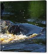 River On The Rocks II Canvas Print