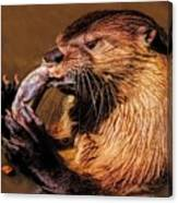 River Otter With His Catch Of The Day Canvas Print