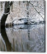 River Reflection 4 Canvas Print