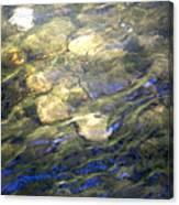 River Ripples Canvas Print