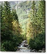 River Stream In Mountain Forest Canvas Print