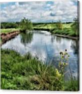 River Tame, Rspb Middleton, North Canvas Print