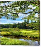 River Under The Maple Tree Canvas Print