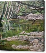 Rivers Of The Big Sur Canvas Print