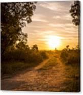 Road In Botswana Canvas Print