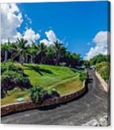 Road In Park Canvas Print