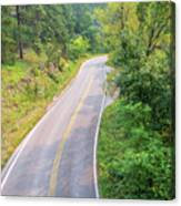 Road In The Black Hills Canvas Print