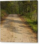 Road In Woods Autumn 2 A Canvas Print