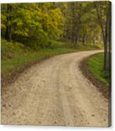 Road In Woods Autumn 3 B Canvas Print