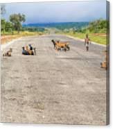 Road In Zambia Canvas Print