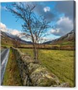 Road Less Travelled Canvas Print