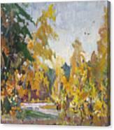 Road Of Autumn Canvas Print