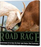 Road Rage Canvas Print