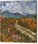 Road Through Colored Meadows Canvas Print