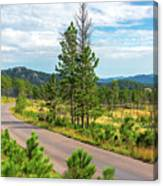 Road Through Custer State Park Canvas Print