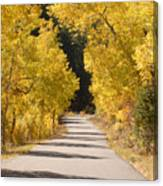 Road To Autumn Canvas Print