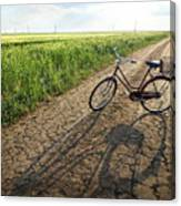 Road To Childhood Canvas Print