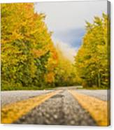 Road To Mt. Mitchell Canvas Print