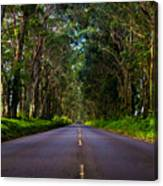 Road To Piopu Canvas Print