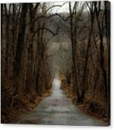 Road To Wildlife Canvas Print