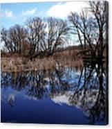 Roadside Pond I Canvas Print