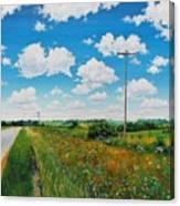 Roadside Prairie Canvas Print