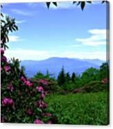 Roan Mountain Rhododendron Gardens Canvas Print