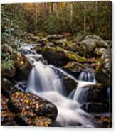 Roaring Fork Waterfall At Autumn Canvas Print