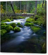 Roaring River Canvas Print