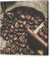 Roasted Coffee Beans In Close-up  Canvas Print