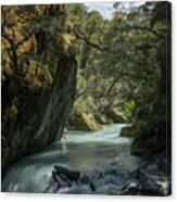 Rob Roy Stream New Zealand Canvas Print
