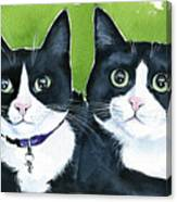 Robin And Batcat - Twin Tuxedo Cat Painting Canvas Print