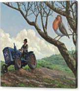 Robin In Field Looking At Farmer Canvas Print