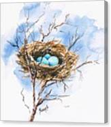 Robin's Nest Canvas Print