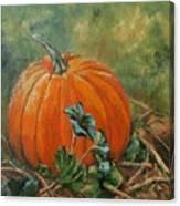 Rochester Pumpkin Canvas Print