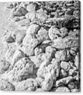 Rock And Salt 2 Canvas Print