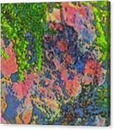 Rock And Shrub Abstract Bright Canvas Print
