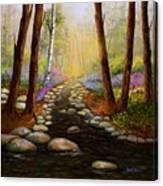 Rock Bottom Creek Canvas Print