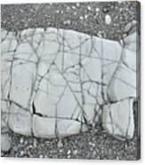 Rock Dog Canvas Print