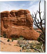Rock Fin -- Arches National Park Canvas Print