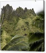 Rock Formations Seen Through Coconut Canvas Print